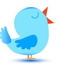 How to Create a Twitter Profile - Twitter Bird