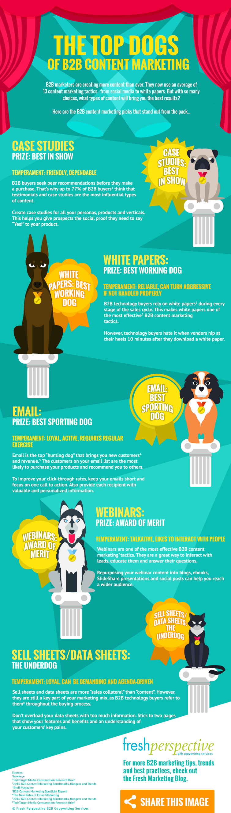 The Top Dogs of B2B Content Marketing Infographic
